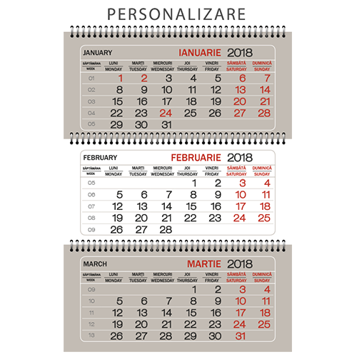 CTPP<br> Calendar triptic perete